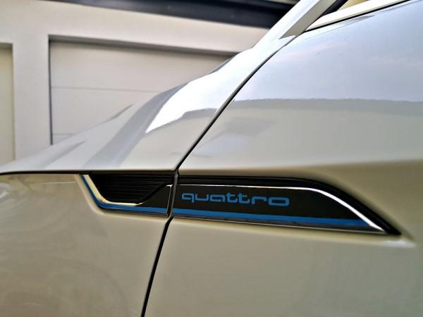 Decor side emblem fender blue with Logo /Carbon